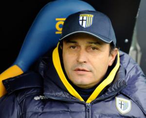 Pasquale+Marino+Parma+FC+v+Udinese+Calcio+lJvPxQurUWRl